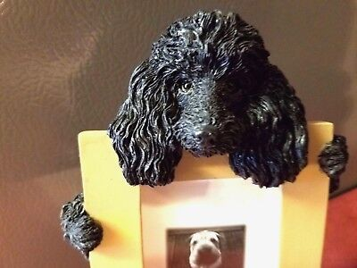 Poodle Black Dog, Photo Frame.1 left. NEW! 7 inch by 5 inch, New