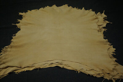 Camel Brown Sheepskin Perforated Hides 0.6 - 0.8 mm Garment leather