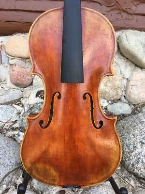 Violin, full sz