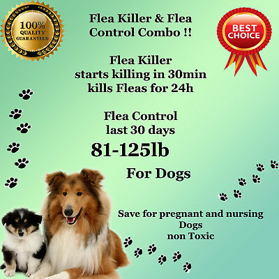 K9 Instant Flea Killer and Control COMBO 12+12 Large Dogs 81-125lb prevention