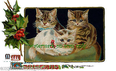 Victorian Christmas Image~Three Kitty Cats on Pillow~Holly~NEW Large Note Cards