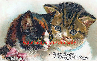 Antique Art~Two Christmas Kitties,Kittens, Cats~Pink Bow~NEW Large Note Cards