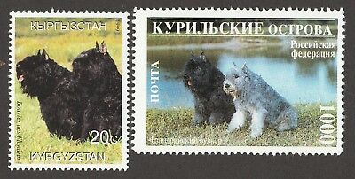 BOUVIER DES FLANDRES *Int'l Dog Postage Stamps* Unique Gift*
