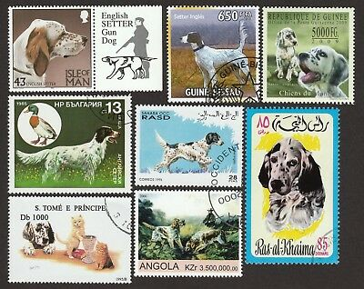 ON SALE!!  ENGLISH SETTER ** Int'l Dog Stamp Collection ** Unique Gift **