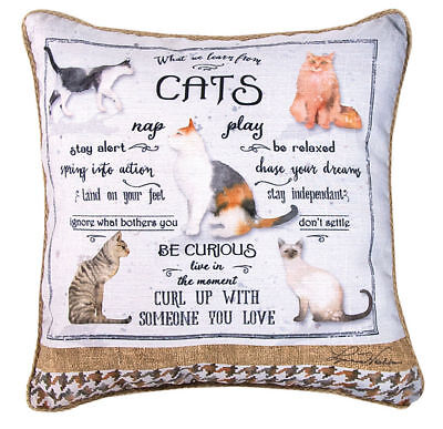 """Cat Throw Pillow - What We Learn From Cats Reversible Pillow 18"""" USA Made"""