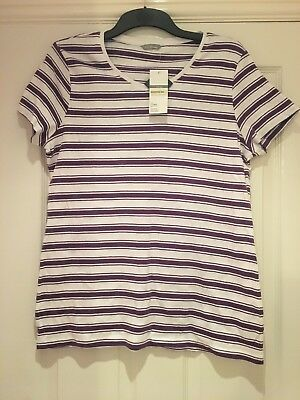 M & S Womens Size 18 Purple And White Stripped Vneck Tshirt Brand New With Tags