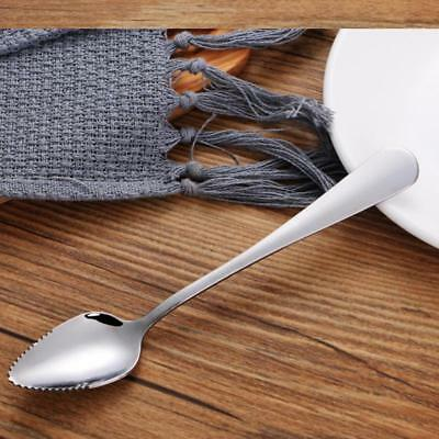 2X Hot Stainless Steel Grapefruit Spoons Serrated  Edge Fruit Scoop New FI