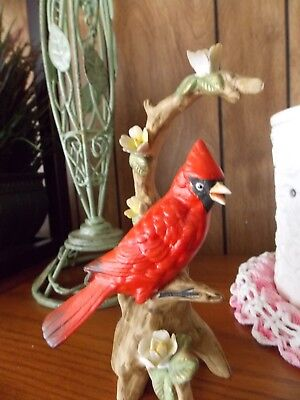 Porcelain Cardinal On Branch - Noritake - A Beauty=Nice For Xmas Too