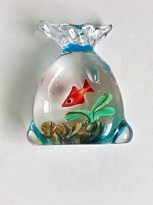 Miniature Gold Fish In Glass Bag Type From Pet Shop W/ Fern & Gravel Decorative