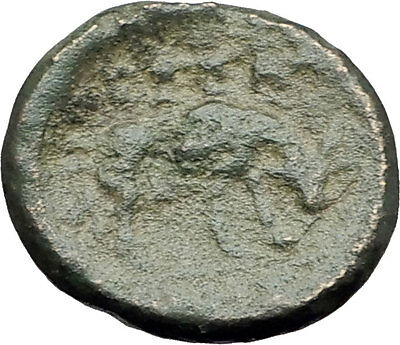 THESSALONICA in Macedonia 146BC Authentic Ancient Greek Coin ATHENA BULL i62323