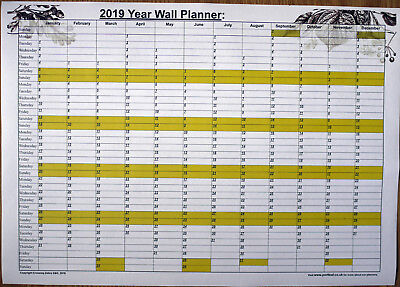 2019 A3 Sized yearly wall planner - Great for appointments, brithdays & events