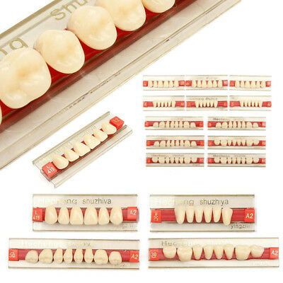 Dental 3 Set of 84 Acrylic Resin Denture Teeth Color A2 Upper Lower Shade #DJ8Z