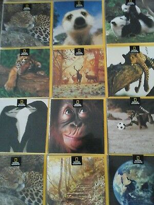 50 anniversary cards wholesale joblot greeting cards 1500 50 national geographic cards wholesale joblot greeting cards m4hsunfo