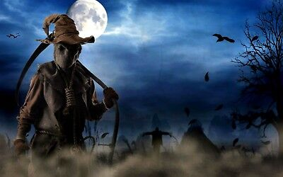 1p Auction Scarecrow HD Wallpaper Image Penny Auction Collection Free No Reserve