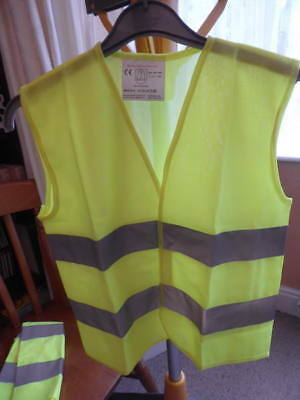 Two Children's AA Supplied High Visibility Vests