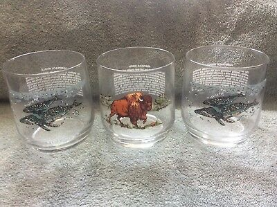 Sunoco Endangered Species Libbey Drinking Glasses; 1 Bison & 2 Humpback Whales