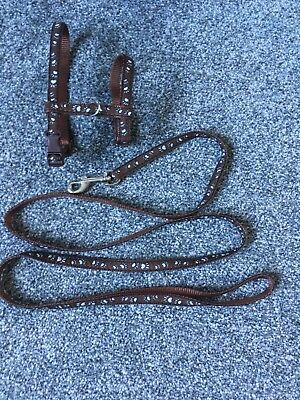 Pre Owned Cat Harness and Lead, Good Condition-brown With Paw Prints