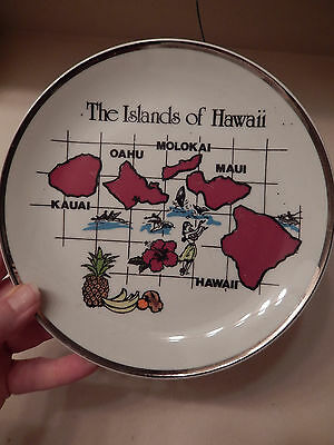 Vintage The Islands Of Hawaii State Collector Souvenir Plate – Silver Trim