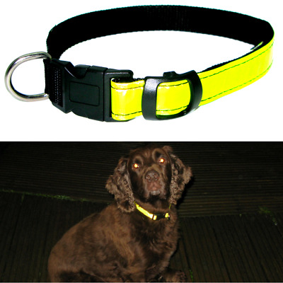 Rosewood Hi Visibility Dog Collar  Hi Viz Yellow Reflective strip