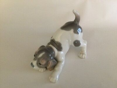 """Lladro Beagle Puppy 6 """" long fr haunch to nose, 4.5"""" high fr tail to paws."""