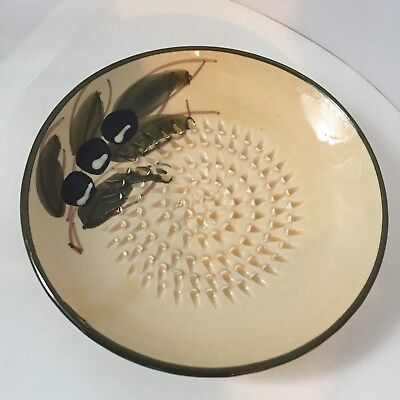 Rupi Garlic Grater Plate Dish Hand Made & Hand Painted From Spain
