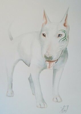 "Dominic Murphy Original Art Watercolour Tattooed English Bull Terrier ""Dime"""