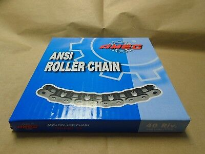 25-1 #25 Roller Chain 10FT with 2 Master Links ANSI Standard 25R 25-1R