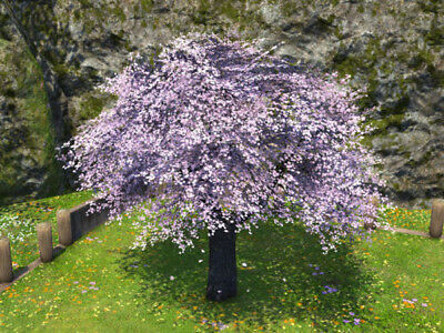 FINAL FANTASY XIV FFXIV FF14 Housing Authentic Eastern Cherry Tree