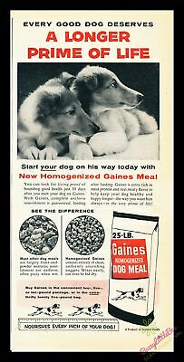 1956 Vintage Print Ad~Gaines Dog Meal / Food~Collie Puppies~J600