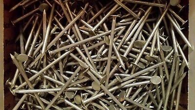 Grip-Rite #11 x 3 in. Electro-Galvanized Steel Roofing Nails (5 lb.-Pack)