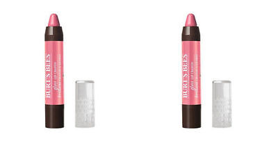 NEW Burt's Bees Gloss Lip Crayon in Pink Lagoon #413,  Sealed Lot Of (2)