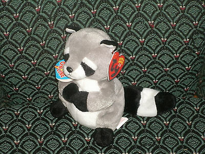 "TY RICKY THE 2.0 BEANIE RACCOON - 6"" Tall - UNUSED CODE- 2008 -MWMT"