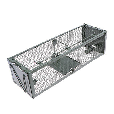 Humane Rat Trap Cage Animal Pest Rodent Mice Mouse Control Live Bait Catch Small