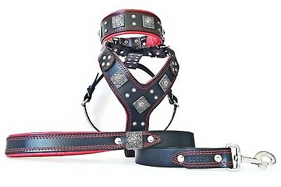 Bestia Eros BIG DOG Set! harness, collar and leash. handmade! top quality!