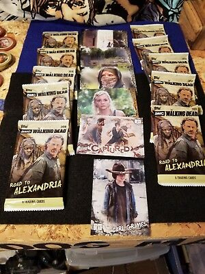 The Walking Dead Road To Alexandria 6 Wd Trading Cards Per Pack(10) Packs New