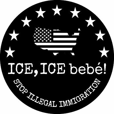 Trump Ice Border Wall Illegal Immigration American Flag 2020 Decal Window Bumper