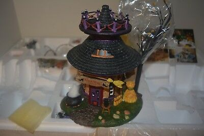 Dept 56  Witch Way Flight School  Brand New But Damaged .. Read Discription