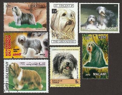 BEARDED COLLIE ** Int'l Dog Stamp Collection ** Great Gift Idea**