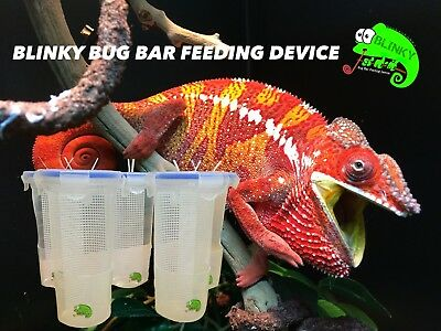 Chameleon Reptile Lizard Cup Bug Bar Feeding Device Bowl For Crickets Locust