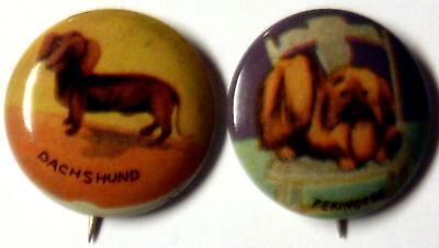 lot of 2 VTG 1930s tin-litho pinback buttons Dogs - Dachshund and Pekingese !!!!