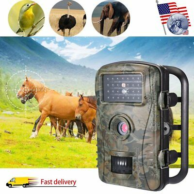Full HD 1080P Video Hunting Trail Camera 12MP Wildlife Scouting Cam Night Vision