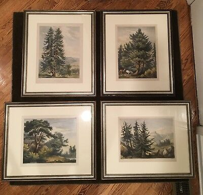 H.W. Burgess Antique Prints Lithograph Landscape Trees, Early 19th Century