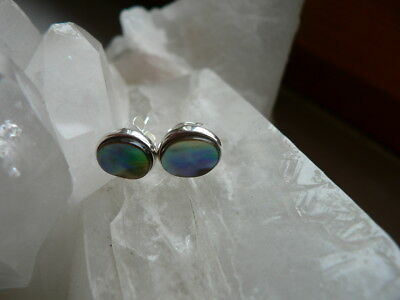 Unikate Paua Muschel Abalone Ohrstecker A in 925er Sterling Silber oval 10x8mm