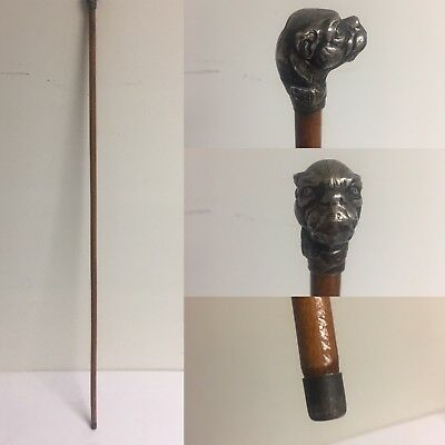 Antique Swagger/ Walking Stick / Cane with Silverplate Dog Head Handle Figural