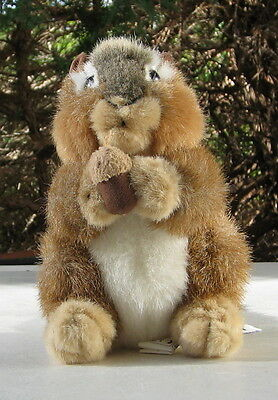 "Chipmunk ""peanuts"" Plush Toy Stuffed Animal House"