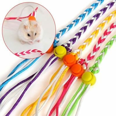 Leash Harness Squirrel Leashes Hamster Glider Mouse Rope Small Animal