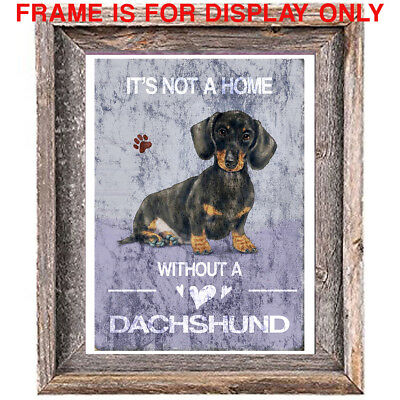 DACHSHUND DOG distressed Art Print 8 x 10 image home wall decor unframed