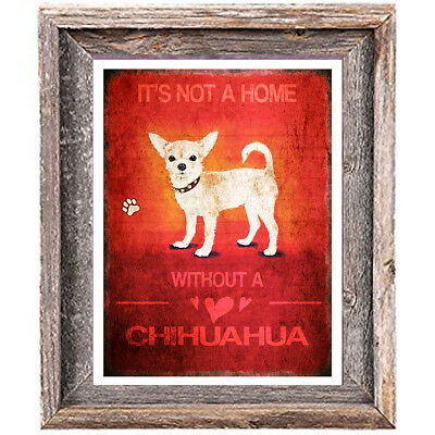 CHIHUAHUA DOG distressed Art Print 8 x 10 image home wall decor unframed