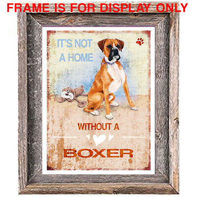 BOXER DOG distressed Art Print 8 x 10 image home wall decor unframed