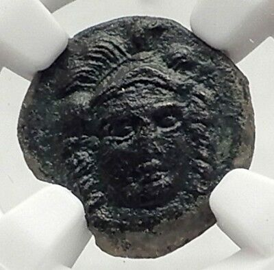 SOLUS in SICILY 4thCenBC RARE R1 Genuine Ancient Greek Coin ATHENA NGC i72737